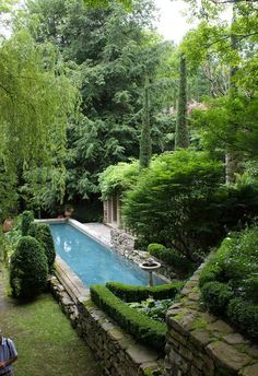 Garden and pool of decorator and landscape designer, Michael Trapp.