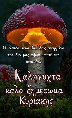 Greek Quotes, Good Night, Pray, Nighty Night, Good Night Wishes