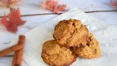 Cinnamon Spice No Guilt Paleo Diet Cookies