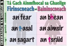 Every noun in Gaeilge is Masculine or Feminine the man / the woman the donkey / the weather the priest / the street Irish Language, Palm Reading, The Donkey, Ireland, Priest, School, Feminine, Weather, Languages