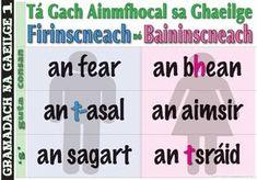 Every noun in Gaeilge is Masculine or Feminine the man / the woman the donkey / the weather the priest / the street Irish Language, Palm Reading, Classroom Decor, Ireland, Donkey, Priest, Education, School, Feminine