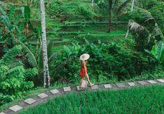 A Pair & A Spare | Ubud Travel Guide