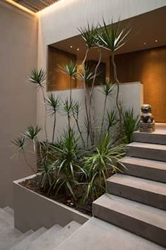 In this web, we often discussing about outdoor garden. The tips and tricks, the design ideas, many things. But today, we'll not talking about outdoor garden. Today we will talking about indoor garden. Home Design, Interior Design Trends, Design Ideas, Floor Design, Villa Design, Escalier Design, Exterior Stairs, Outdoor Stairs, Patio Stairs