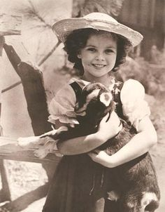 shirley temple - Bing Images