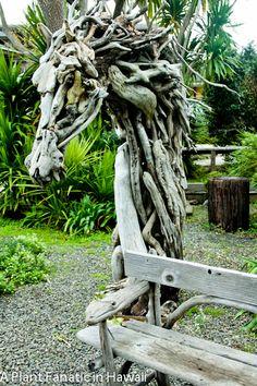 Amazing Driftwood Sculpture! A Plant Fanatic In Hawaii: A Beautiful Art  Garden