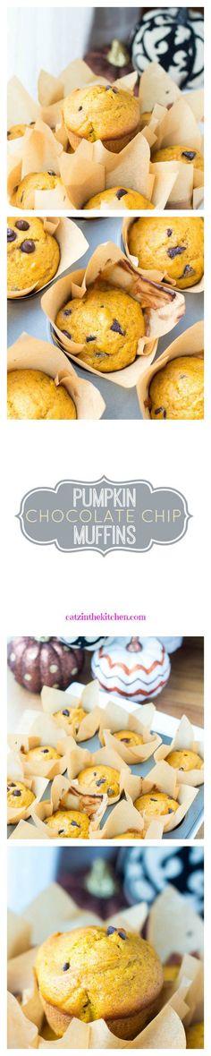 Pumpkin Chocolate Chip Muffins | Catz in the Kitchen | catzinthekitchen.com | #pumpkin