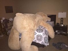 We're Not Ashamed to Admit We Totally Want One of These Giant Costco Teddy Bears  - CountryLiving.com