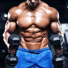 Bodybuilding is centered around building your body's muscles through weightlifting and nutrition. Whether recreational or competitive, bodybuilding is often referred to as a lifestyle, as it involves both the time you spend in and outside the gym Bodybuilding Videos, Bodybuilding Recipes, Gain Muscle Fast, Build Muscle, Bodybuilder, Best Weight Loss, Weight Lifting, Fun Workouts, At Home Workouts