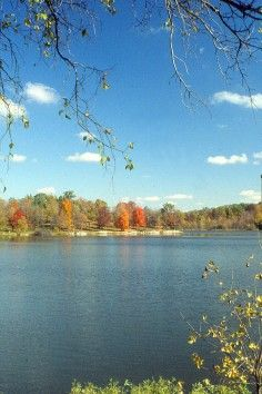 Shawnee State Park in West Portsmouth, OH. Take in breathtaking views of the surrounding hills!