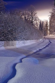 A path through the snow | Flickr - Photo Sharing!