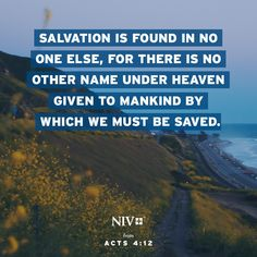 NIV Verse of the Day: Acts 4:10-12