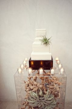 50 Original Wedding Ideas Your Friends Haven't Thought Of Yet Birds of a Feather – Weddingbells.ca