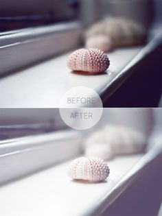frosty photoshop action - urchins free ps action