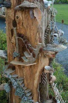 Tree stump fairy garden