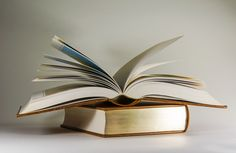 bvik   bvik: Verhaltenskodex soll geistiges Eigentum schützen - AGITANO ...