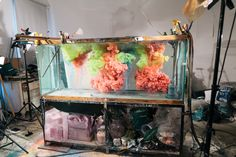 Art Underwater / An Interview with artist Kim Keever / The LANE