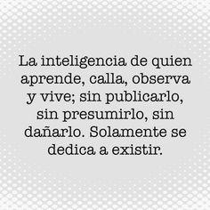 〽️ La inteligencia de quien aprende, calla, observa y vive; sin publicarlo, sin presumirlo, sin dañarlo. Solamente se dedica a existir.