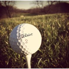 This Titleist is about to meet the trees!