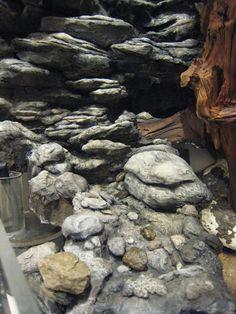 Your Source for Dart Frog and Vivarium information. Terrarium Diy, Gecko Terrarium, Aquarium Terrarium, Planted Aquarium, Reptile Zoo, Reptile House, Reptile Cage, Reptiles, Snake Enclosure