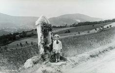 1932. A mai Törökvész út 120-as szám előtt állunk. Budapest Hungary, Old Photos, Utca, History, Landscapes, Outdoor, Old Pictures, Paisajes, Outdoors