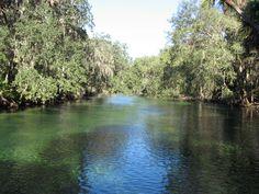 Blue Springs in Florida