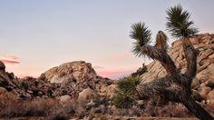 This El Niño weather is killing me   #nature #hiking #scenic #desert #nikon #tiffen #photooftheday #jonasblizzard #california #sunsets by jimzy77