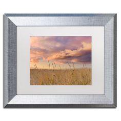 Michael Blanchette Photography 'Beachgrass Sunrise' Matted Framed Art