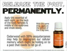 Young Living Cedarwood emotions release past. Essential Oils 101, Essential Oil Diffuser, Essential Oil Blends, Cedarwood Essential Oil Uses, Yl Oils, Doterra Oils, Young Living Oils, Young Living Essential Oils, Cedarwood Oil