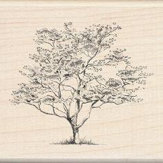 Dogwood tree stamp