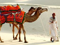 Rajasthan Vacation tour package Enjoy of Rajasthan holiday its unforgettable cache instant. If you will trip to beautiful place delight in with Rajasthan bundle. If you need to have please call currently: 8130962444.  Rajasthan Vacation tour package Rajasthan Packages 02 Nights / 03 Days Starting Price Rs. 2,999 http://www.shineindiatrip.co.in/Rajasthan-Packages/