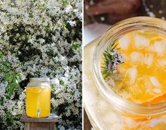 Homemade cordials are one of my favourite things to make, give and drink. They…