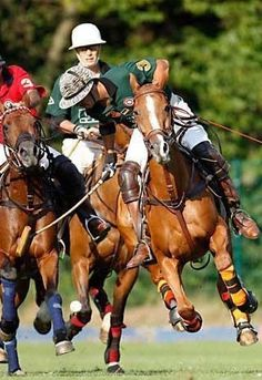 Touch and go for horse and rider in a polo competition. Nice action photo.