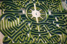 Maze on the Blenhiem  Palace grounds