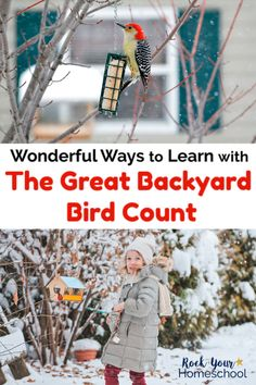Discover wonderful ways to learn with The Great Backyard Bird Count this February! Enjoy this special event with your kids using these resources & ideas. Nature Activities, Counting Activities, Stem Activities, Infant Activities, Activities For Kids, Great Backyard Bird Count, Backyard Birds, How To Start Homeschooling, Homeschooling Resources