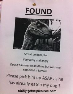 Funny Found Lost Dinosaur Velociraptor Sign | Funny Joke Pictures #PembertonFest// pembertonmusicfestival.com
