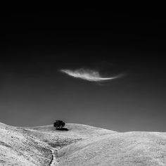 Shelter: By Vanda Ralevska, more artworks https://www.artlimited.net/vandaralevska #Photography #Digital #Nature #Scenery #Countryside