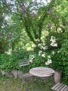 Verwunschener Gartenplatz