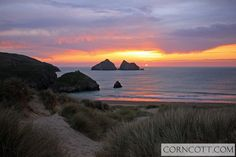 Holiday Cottages in Cornwall - Great Cornish holidays Holiday Cottages In Cornwall, North Cornwall, Newquay, Holiday Accommodation, Coastal Living, Pond, Life Is Good, Surfing, Places To Visit