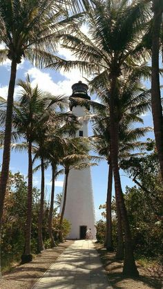 Key Biscayne Lighthouse, Florida With My great Aunt who has lived her whole life in Florida, I walked down this row of Palm trees to this beautiful light house Florida Usa, Florida Travel, Florida Keys, Key West Florida, Key Biscayne Florida, South Florida, Grands Lacs, Les Continents, Vacation Spots