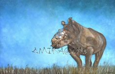 Hope, a precious female rhino that was hurt by removing her horn. She survived and are looked after now. This painting in oil was sold on September 2015, at auction for needed funds to help her get better. Photo reference by Adrian Steirn.