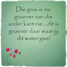 Afrikaanse Inspirerende Gedagtes & Wyshede: Die gras is nie groener aan die ander kant nie.dit is groener daar waar jy dit water gee! Bible Quotes, Motivational Quotes, Qoutes, God Quotes About Life, Rose Quotes, Afrikaanse Quotes, Office Quotes, Wedding Quotes, Pretty Words