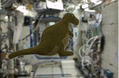 Dinosaurs in space! While on the ISS, astronaut Karen Nyberg made this dinosaur for her son, created from reclaimed velcro-like fabric that lines the Russian food containers.