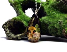 Real Mushroom and Moss Terrarium Necklace = A Piece of Wearable Art, Perfect For Any Nature Lovers Jewellery Collection. Real Mushroom Pendant, Resin and Mushroom Necklace, Mushroom Necklace, Resin Jewellery, Resin Necklace, Australia Gift #mushroomnecklace #mushroomandmoss #realmushroom #terrariumnecklace #mossandresin #mushroompendant Terrarium Necklace, Resin Necklace, Wild Mushrooms, Stuffed Mushrooms, Clear Casting Resin, Moss Terrarium, Resin Jewellery, Walking In Nature, Wearable Art