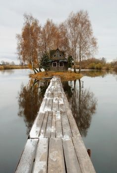 Cabin in the woods on an island in the middle of a lake.