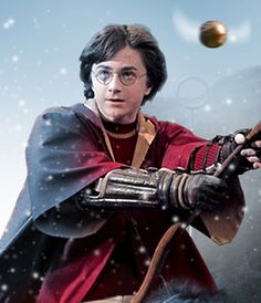 Quidditch is one of those things about Harry Potter that lightened up the story at times and it helped to satisfy those parts of you that wanted something less complicated