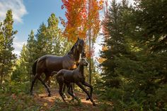 Triple Creek Ranch in the Fall
