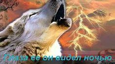 одинокий волк... самая красивая в мире мелодия... - YouTube