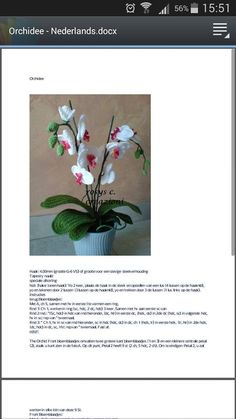 orchidee patroon