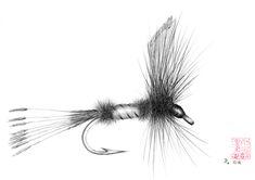 royal coachman fly drawing - Google Search