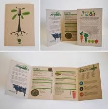 Kết quả hình ảnh cho leaflets design ideas